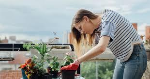 creating an edible garden for every space