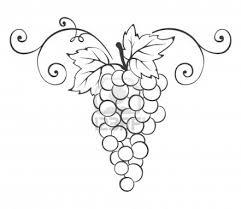 Imprimer Nature Fruits Raisin Num Ro 65304 Coloriage De RaisinL