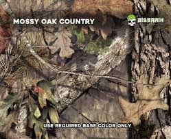 Mossy Oak Patterns Classy Mossy Oak Break Up Country Camo Big Brain Graphics