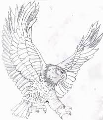New Bald Eagle In Nest Coloring Pages Nichome