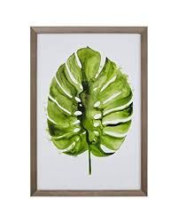 <b>Leaf Decor</b>: Amazon.com