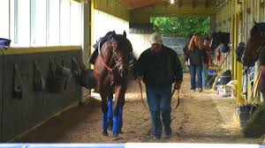 American Pharoah first horse to win Triple Crown since Affirmed in ...
