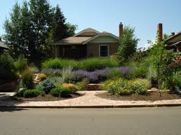 xeriscape front yard - Google Search