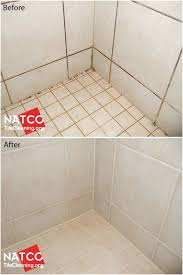 bathroom tile mold bathroom tile mold removal unique best cleaning moldy shower grout and caulk images