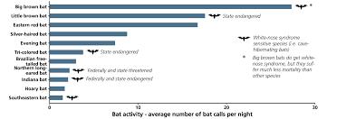 Bat Species Chart Bat Population Monitoring In Petersburg National Battlefield