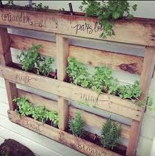fullsize of sleek herbs diy pallet herb garden herbs garden ideas herbs garden ideas vertical herb