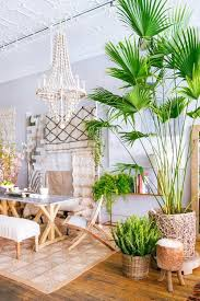 Small Picture Tropical Home Paradise Style Living Space Dream Home