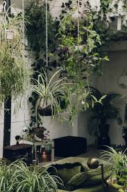 Best 25+ Hanging plants outdoor ideas on Pinterest | Plant wall ...