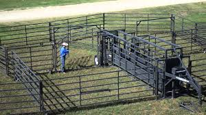 Sheep Corral Design Innovation Nation New Solutions To Old Problems In The Ag