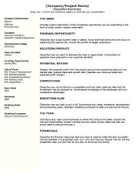 Executive Summary Templates Template Executive Summary Example Template 19