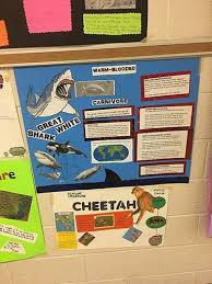 poster for school project es students create posters haywood county schools