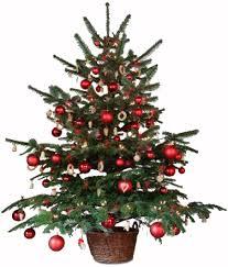 Christmas Tree Gif On Gifer By Sharpsmasher