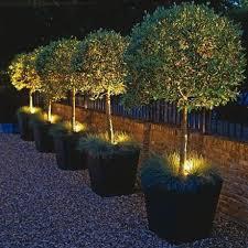outdoor backyard lighting ideas. brilliant ideas best outdoor lighting ideas images on pinterest for backyard lighting ideas