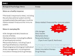 as unit rules of the game ppt  unit 2 biological psychology stress essays stress as a bodily response