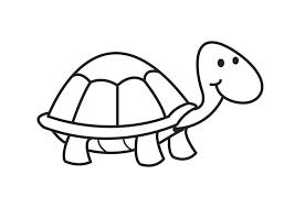 Kleurplaat Schildpad Afb 17592 Images