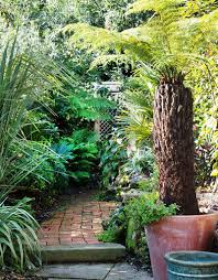 Small Picture Garden Tour A Stunning Tropical Garden Before and After