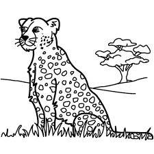 Small Picture Female Leopard Coloring Pages Coloring Coloring Pages