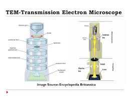 Tem Microscope Electron Microscopy Sem Tem