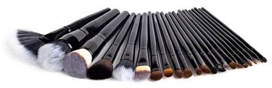 coastal scents brushes uses. 22 piece brush set. the coastal scents brushes uses