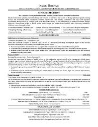 marketing executive resume samples samples examples marketing executive resume samples