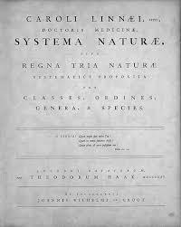 Linnaean Taxonomy Wikipedia