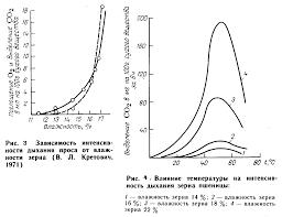 Физические свойства зерновой массы Реферат Образующаяся при аэробном дыхании вода остается в зерновой массе и при высокой интенсивности дыхания может существенно увлажнить ее приводя тем самым к еще