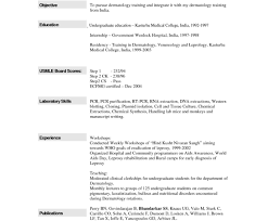 Download How To Fill Out A Resume 79 Amazing Resume Template