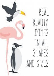Beautiful Flamingo Quotes Best Of Poster Beauty A24 Poster Met Flamingo Toekan En Pinguin En De Mooie