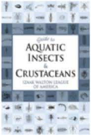 Stream Insect And Crustacean Id Resources Virginia Save