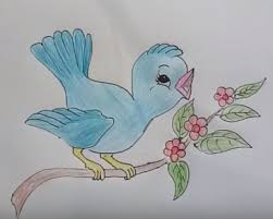 baby birds drawing for kids. Brilliant Baby How To Draw Cute Cartoon Bird With Baby Birds Drawing For Kids