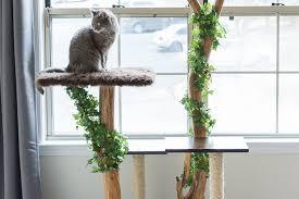 cool cat tree furniture. Cool Cat Tree Furniture S