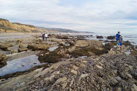 Crystal Cove State Park Pelican Point Tide Pools
