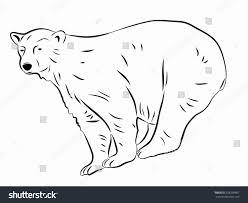 Illustration Polar Bear Black White Drawing Stock Vector 528295867