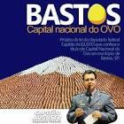 imagem de Bastos São Paulo n-17