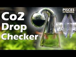 Pisces How To Co2 Drop Checker