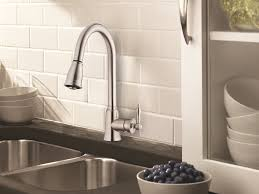 Danze D SS Prince Pull Down Kitchen Faucet Stainless Steel