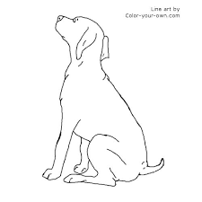 Small Picture German Shorthair Pointer Puppy Coloring Page