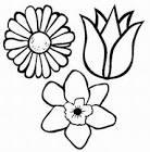 Раскраска цветик семицветик для детей 146