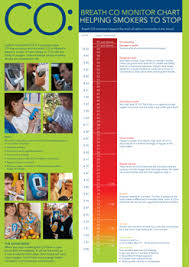 Breath Co Monitor Chart A2