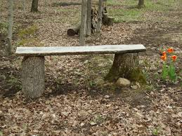 Tree Stump Seats Rustic Outdoor Bench Made From Two Tree Stumps And A Piece Of Slab