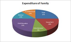 Monthly Income Chart After Providential Fund Deductions And Payment Of House Rent