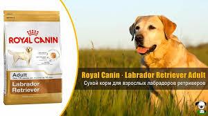 корм для щенков royal canin medium puppy средних пород от 2 до 12 месяцев сух 3кг