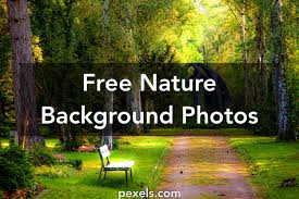 Image Ultra Hd Pexels 1000 Great Nature Background Photos Pexels Free Stock