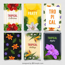 Tropical Party Invitations Set Of Tropical Party Invitations Vector Free Download
