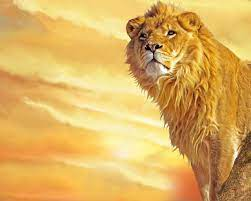 WALLPAPER DOWNLOAD: 24 Lion Wallpapers ...