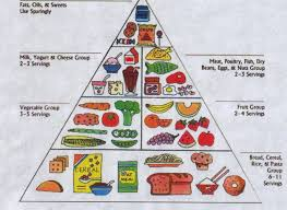 Food Pyramid Project Good Foods For Good Health Webquest