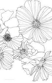 best ideas about flower drawings poppy drawing 17 best ideas about flower drawings poppy drawing flowers to draw and draw flowers