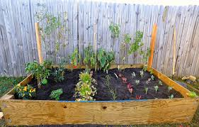 Small Picture Urban Vegetable Garden Ideas Small Design With Backyard And