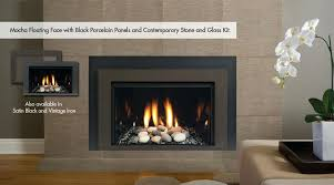 natural gas fireplace insert with er kit