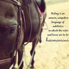 There is no secret so close as that between a rider and his horse ... via Relatably.com